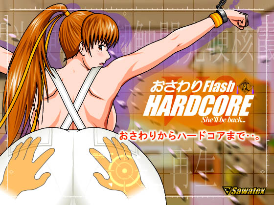 [Sawatex] の【おさわりFlash Hardcore 霞 ~ 再生V3.15】