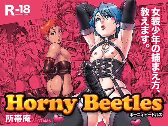 [所帯庵] の【Horny Beetles】
