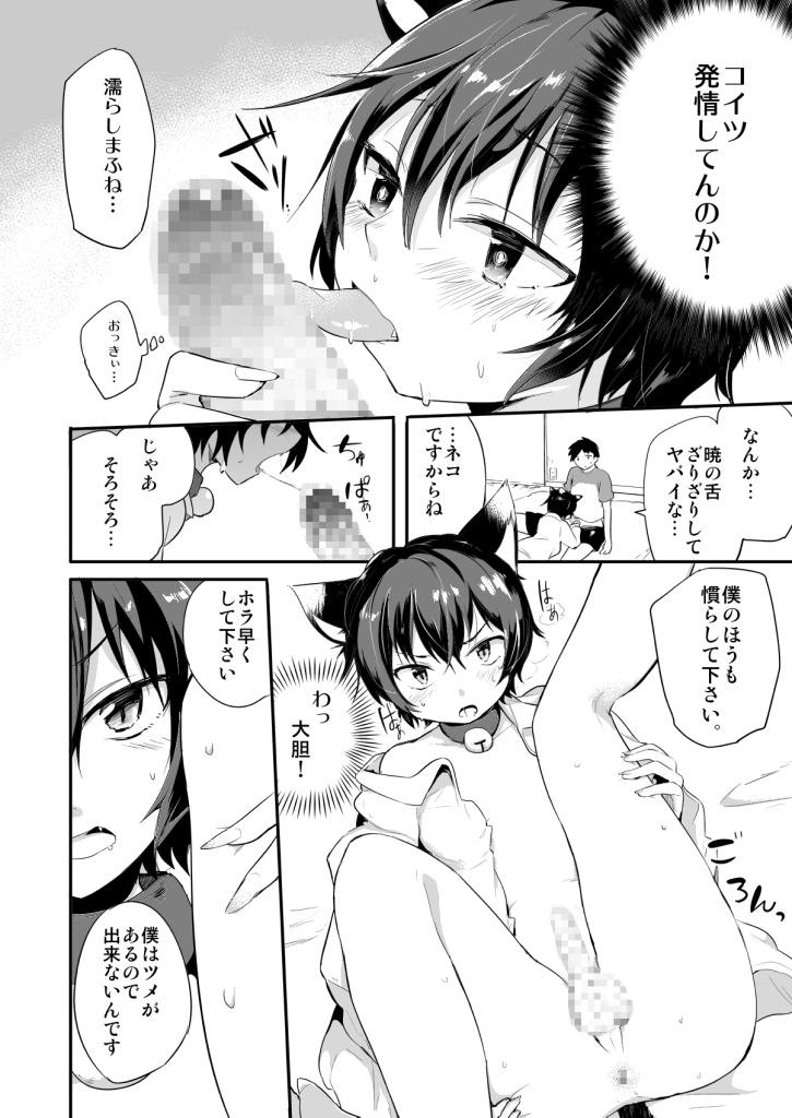 [青色一座] の【のらねこと白昼夢】