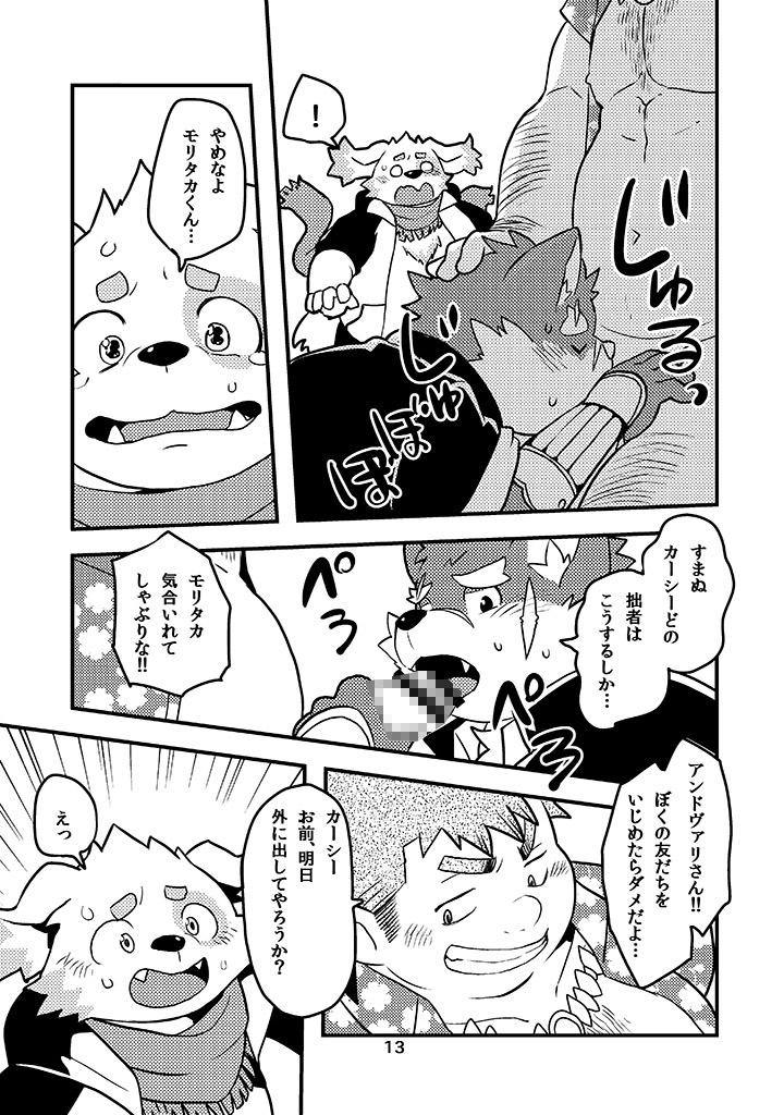 放サモ本セットVol.1_1