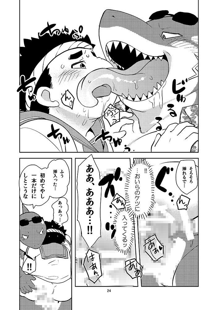 放サモ本セットVol.2_1