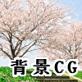 著作権フリー素材(桜並木)