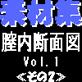 素材集その2膣内断面図Vol.1
