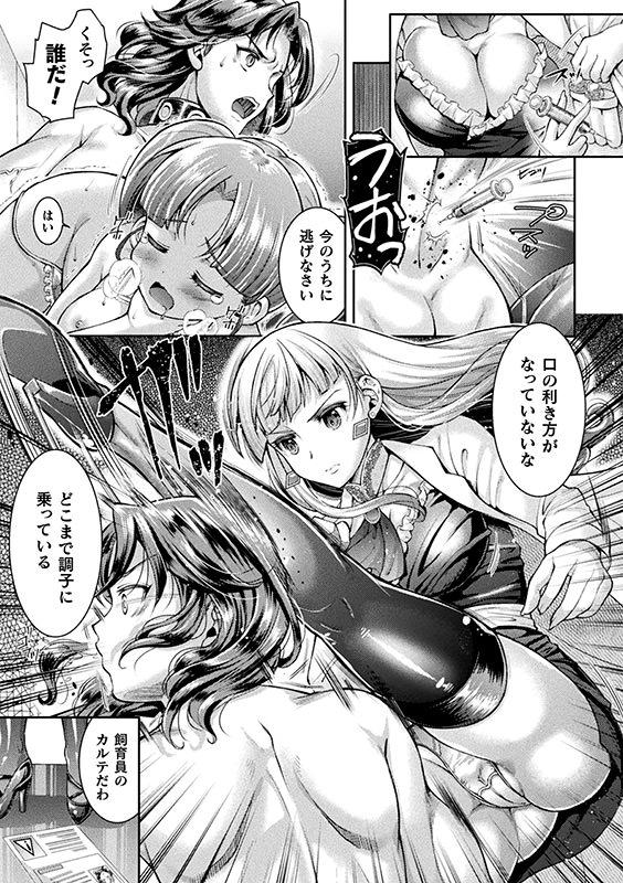 搾精施設所長ステラの1日【単話】