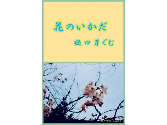 花のいかだの紹介画像